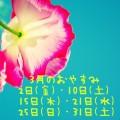 IMG_5944