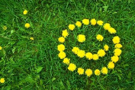 芝生にたんぽぽでニコちゃんマーク